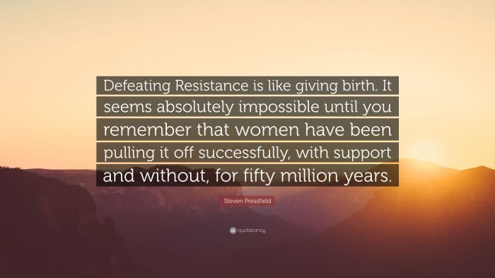 5118565-steven-pressfield-quote-defeating-resistance-is-like-giving-birth