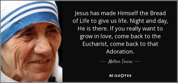 quote-jesus-has-made-himself-the-bread-of-life-to-give-us-life-night-and-day-he-is-there-if-mother-teresa-57-41-90